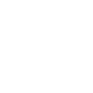 VISION TO SHOW
